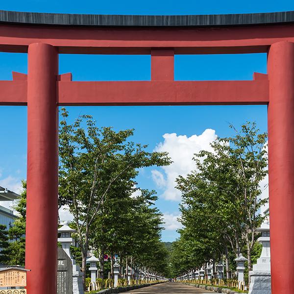 鎌倉のシンボルの一つ大鳥居(二の鳥居)