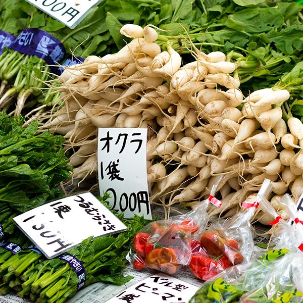 庶民の台所鎌倉農協連販売所(レンバイ)